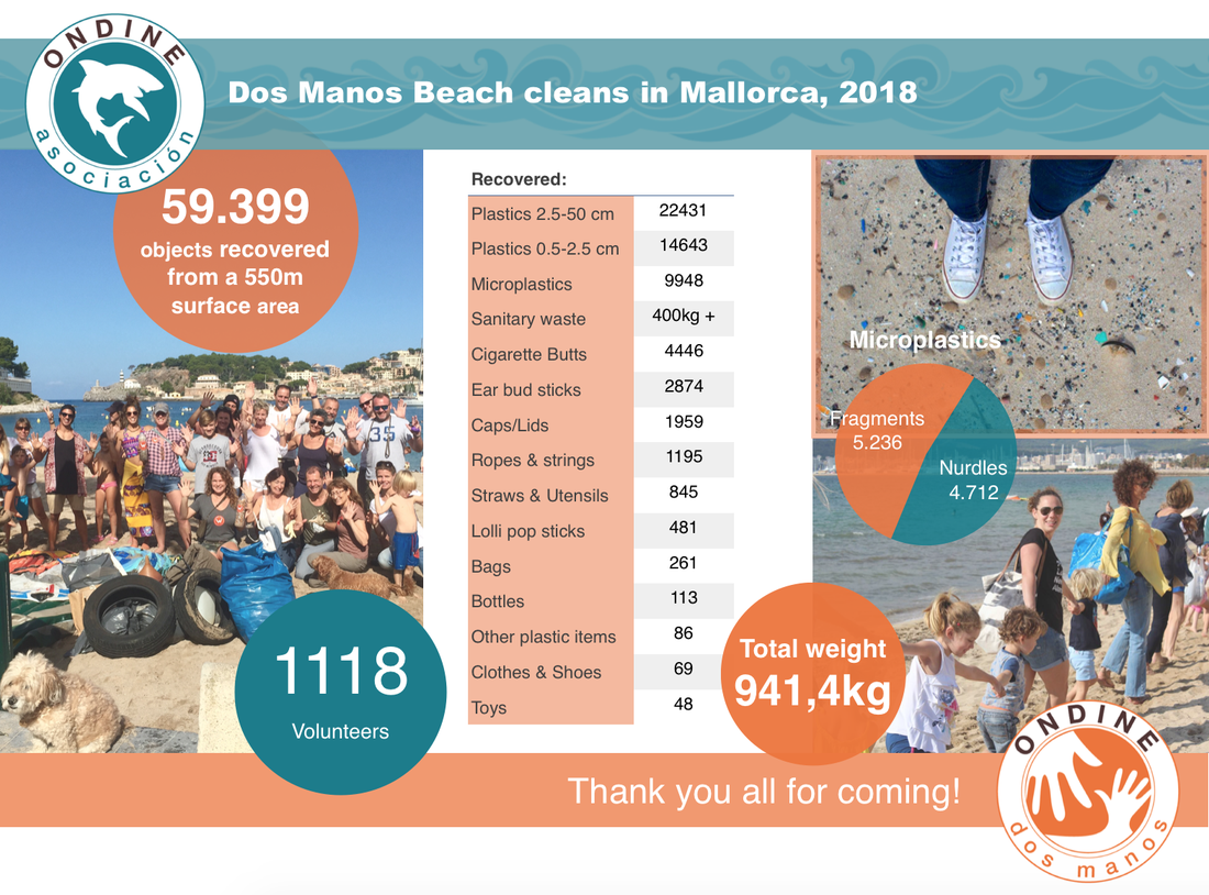 Beach clean results 2018