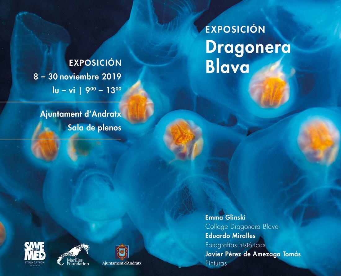 Visita la exposición Dragonera Blava