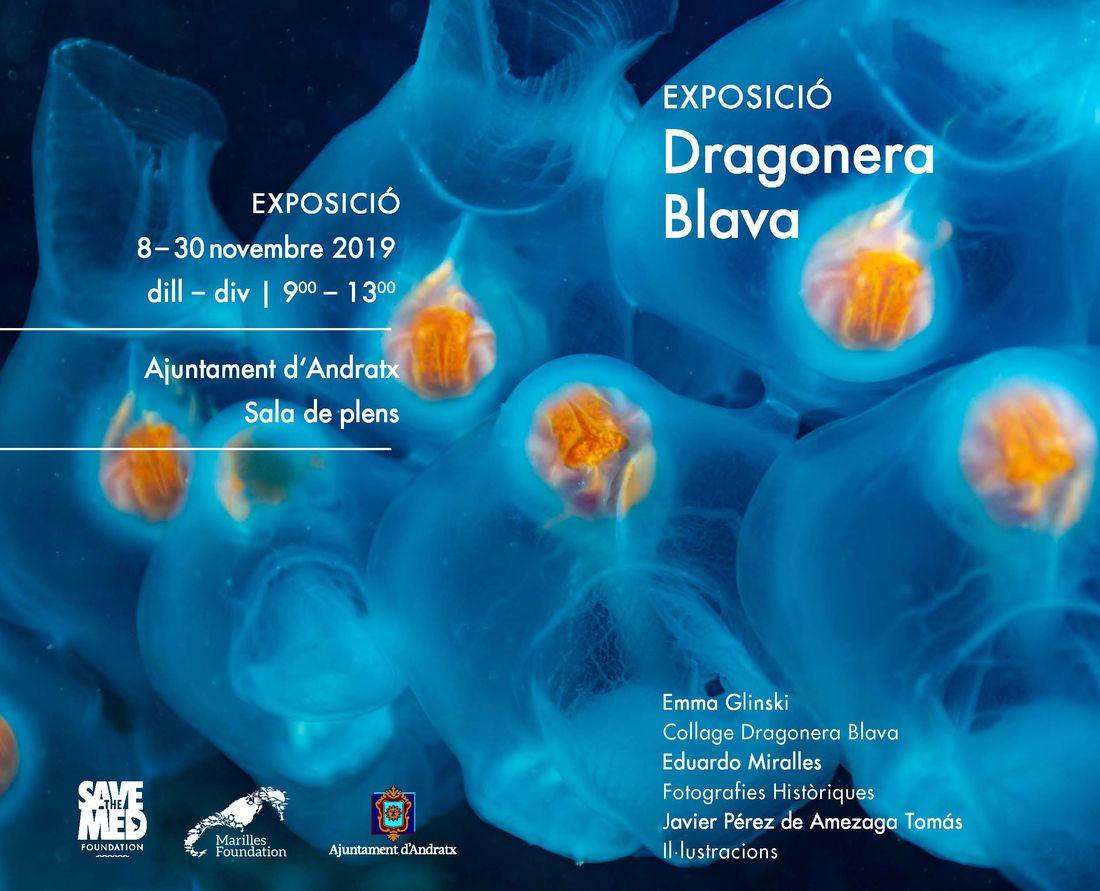 Visita l'exposició Dragonera Blava