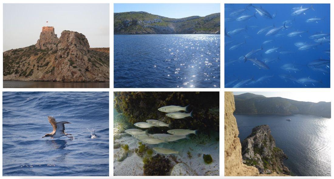 Parque Nacional Marítimo - Terrestre del Archipiélago de Cabrera