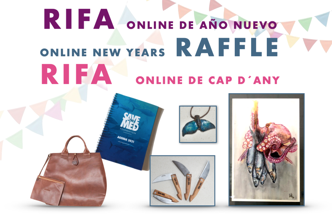 "Join our New Year's Raffle to raise funds for the repair of our research vessel ""Ondine""!"
