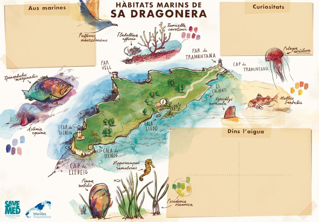 Mapa sobre els hàbitats marins de Sa Dragonera